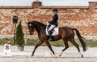 Młode konie powalczą otytuły mistrzów Polski